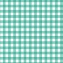 Gingham 920 T6 Turquoise